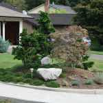 Landscaping Job Portland Oregon